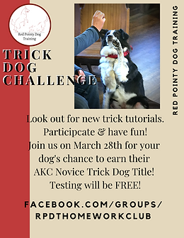 Trick Dog Challenge Info.png