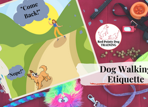 Dog Walking Etiquette