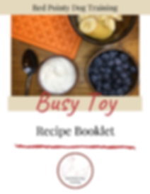 Busy Toy Recipe Booklet.png