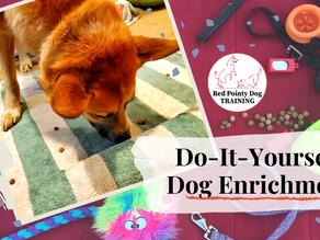 DIY Dog Enrichment