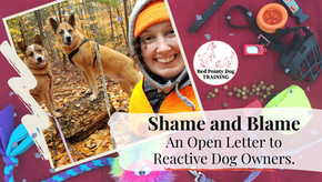 Shame and Blame. An Open Letter to Reactive Dog Owners.