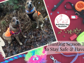 Hunting Season Tips to Stay Safe and Have Fun.