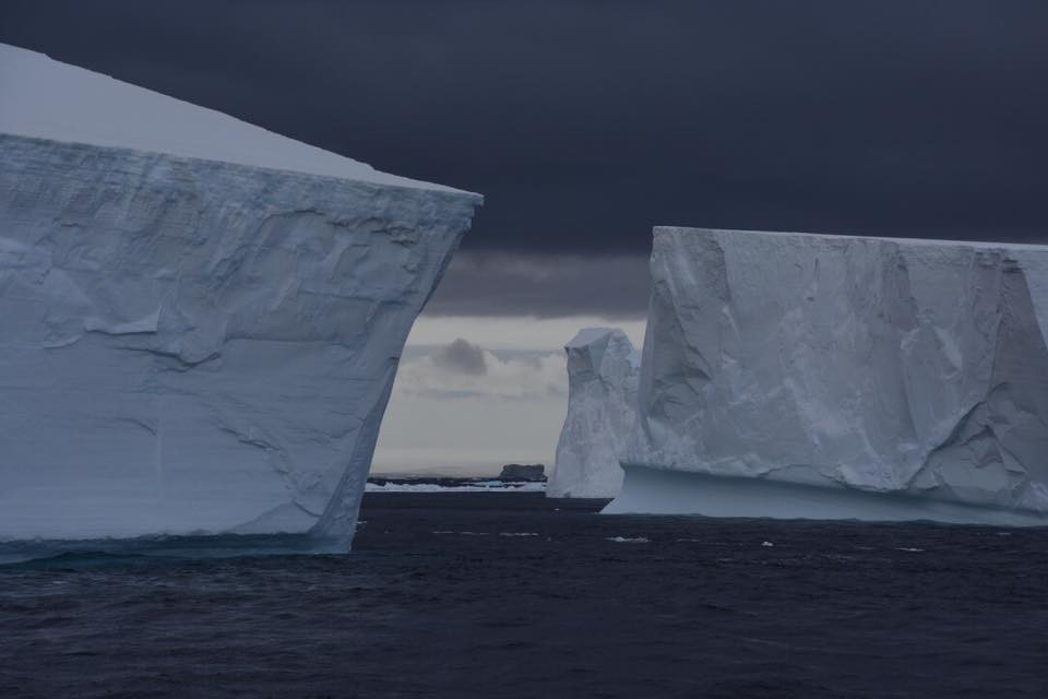 The foreboding and beautiful #IcebergArmada, by Homeward Bound participant Anne Christianson