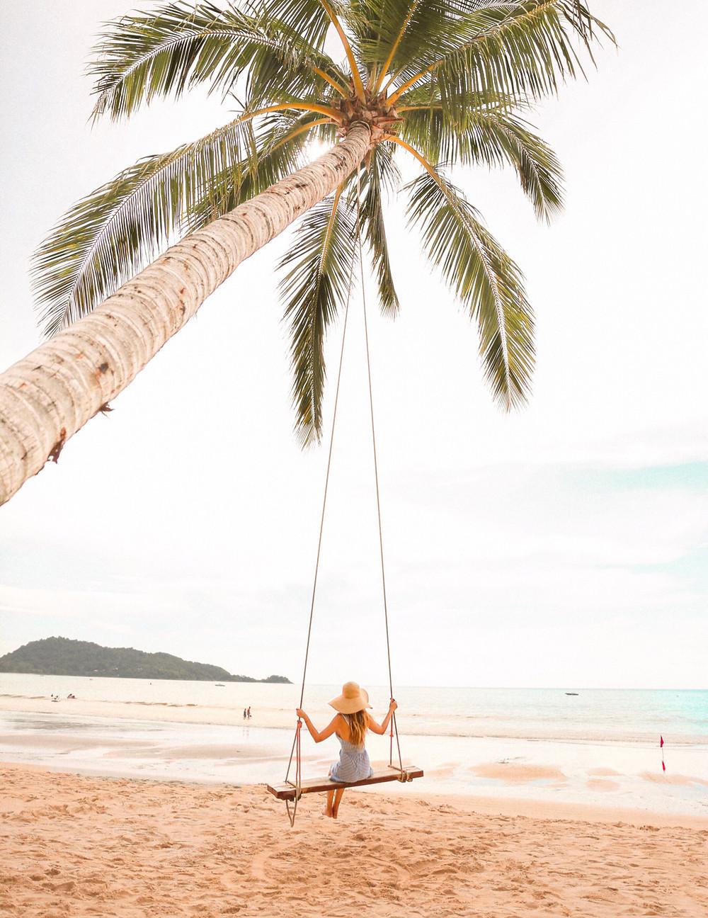 swing on palm tree on Kata beach, Phuket