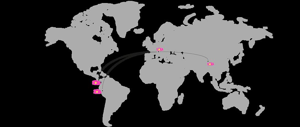 mappa zenzero cntrale.png