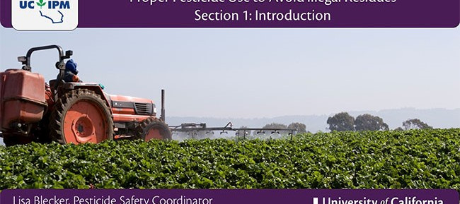 It's time for DPR license and certificate holders renew—get units via online courses from UC IPM