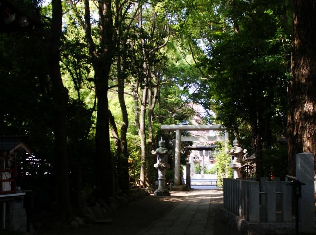 田無神社 - コピー (640x476).jpg