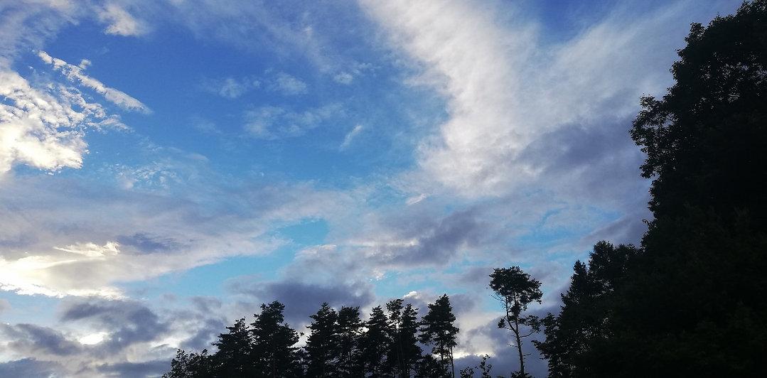 8月の空.jpg