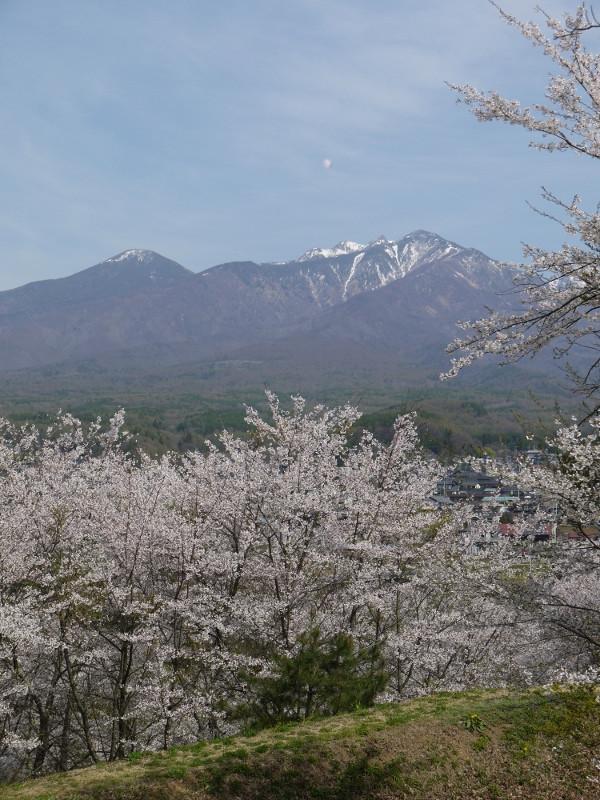 谷戸城跡から八ヶ岳を望む.jpg