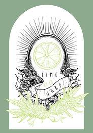 Lime Warp Seeds