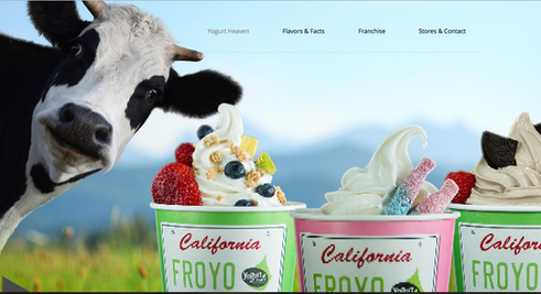 Yogurt Heaven - Oslo
