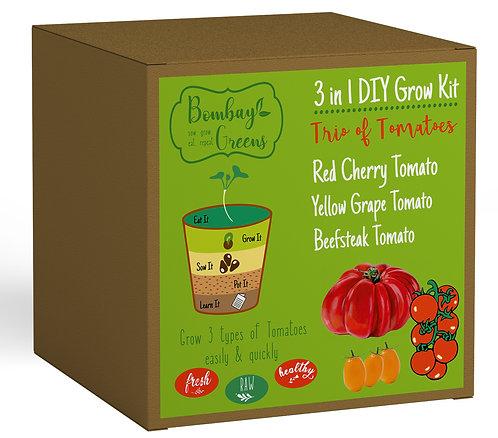 Tomato Kit - Beefsteak Tomato, Red Cherry Tomato, Yellow Grape Tomato