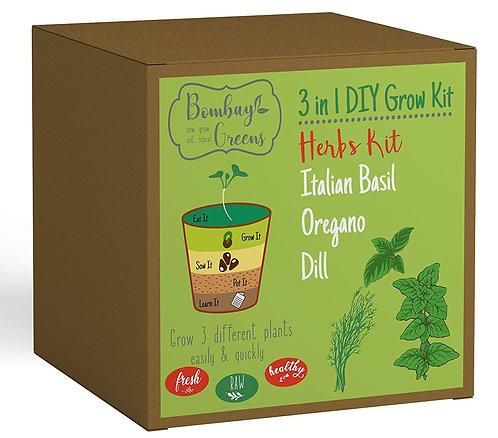 Herbs Kit - Italian Basil, Dill, Oregano