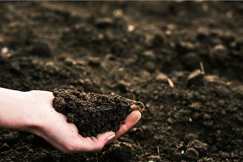 Potting Mix Soil