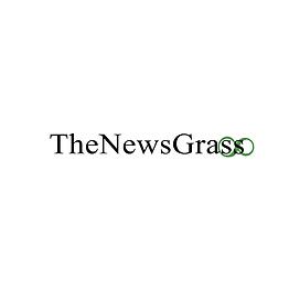 news grass bombay greens.png