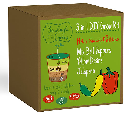 Chillies Kit - Yellow Desire, Jalapeno, Mixed Bell Peppers