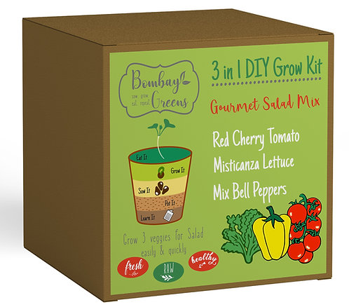 Salad Kit - Mixed Bell Peppers, Mixed Lettuce, Red Cherry Tomato
