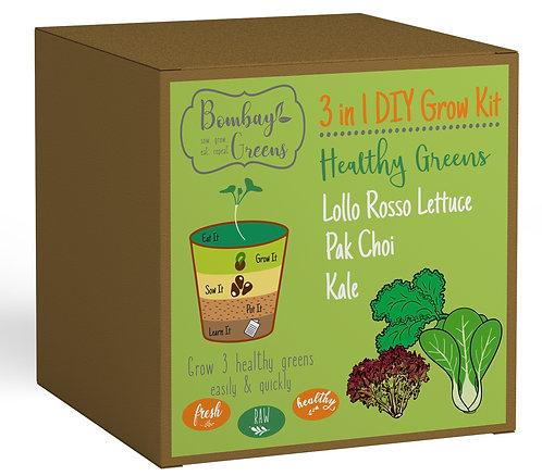 Healthy Greens - Kale, Pak Choi, Lollo Rosso Lettuce
