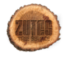 Zutes Tree Service Rochester NY Stump Removal 585-303-2143