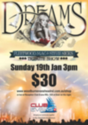 Dreams Mac Concert.jpg