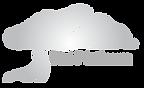 Divi_Platinum-logo-RGB-gradient.png