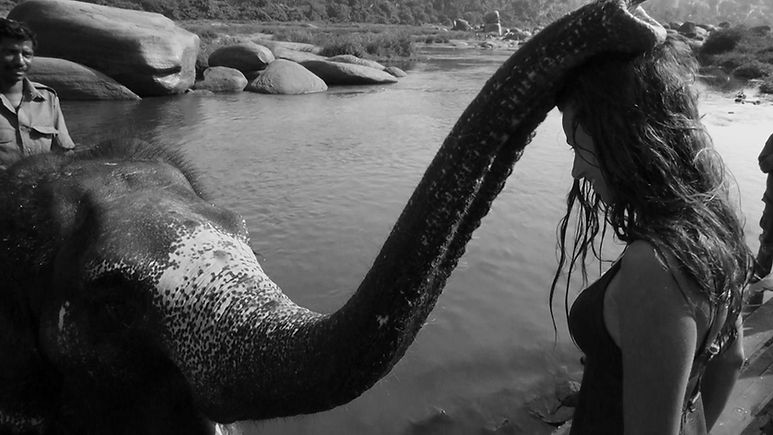 Elephant Girl 2.jpg
