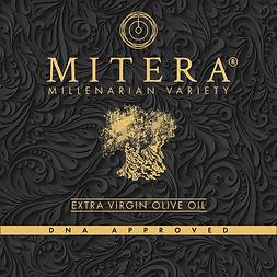 Mitera Logo ipg 19.01.21.jpg