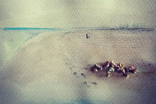 Misty beach walk with shells Largs Bay