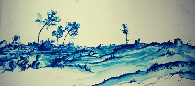 Eastern Cape_blue ink_38x30cm.jpg