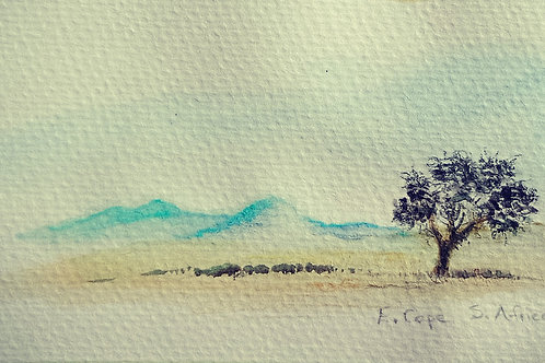 Eastern Cape Landscape small card