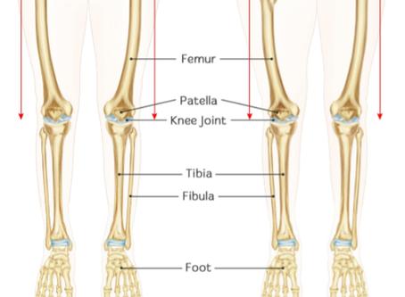 Leg length discrepancy FAQs