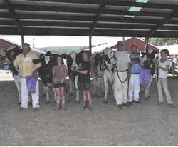 Holstein Premier Breeder & Exhibitor