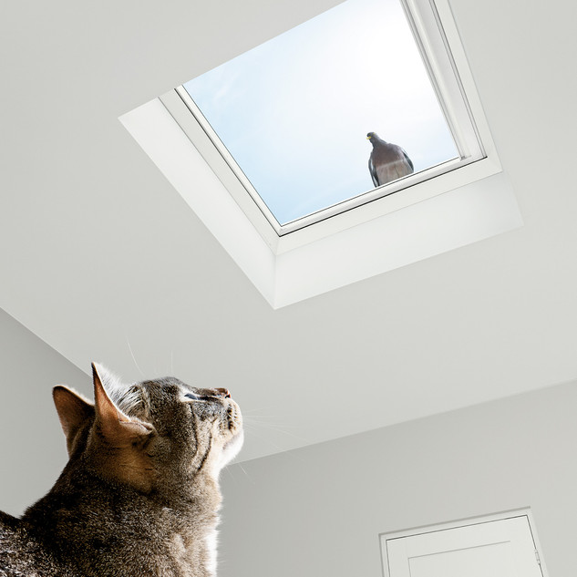 Dachfenster Velux
