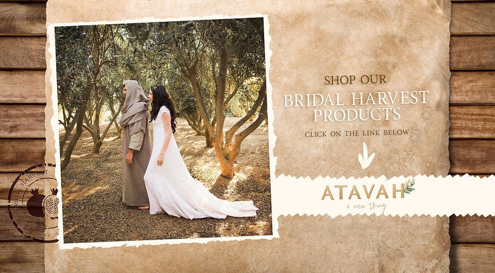 Bridal-Harvest_new.jpg