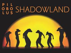 SHADOWLAND [2013]