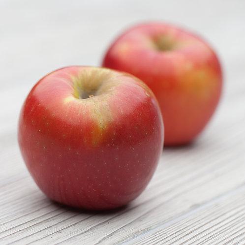 Apples, Envy (Lb)