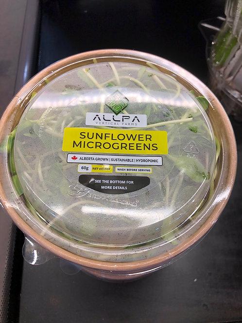 Microgreens, Sunflower, AB 60g
