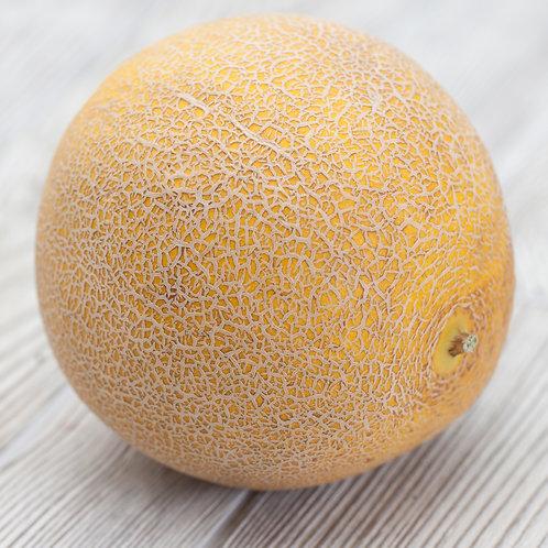 Melon, Galia (Each)