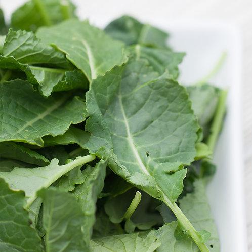 Salad, Arugula/Spinach, 5 Oz Organic