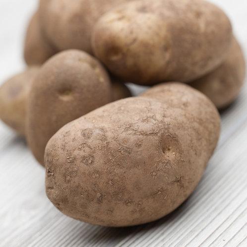 Potatoes, Russet, 5 Lb Bag