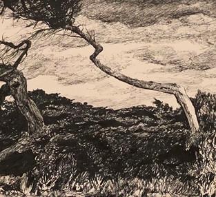 Jo Reitze  'Resilient Trees Ocean Grove'