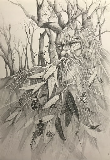 The Green Man (agter the fires)CBoylePencilframed81x64$850.JPG