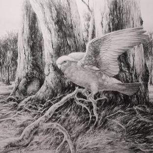 Dennis Murane  'Wildlife Study'