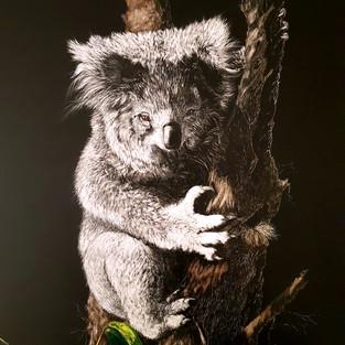 Jan Lowe 'Living with Hope - Koala'
