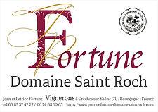 Logo Fortune.jpg