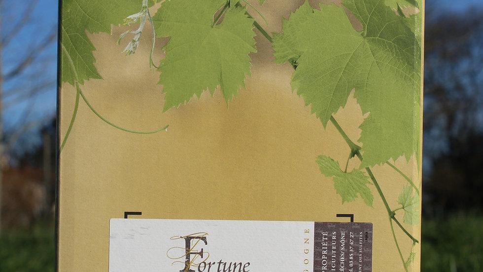BIB 5 Litres Beaujolais Blanc
