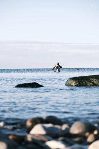 Moucheur en pleine Mer Baltique !