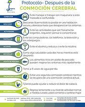 Post Concussion Protocol (Spanish)