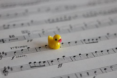 Adopt-a-Duck