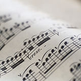 Detail of Sheet Music_edited.jpg